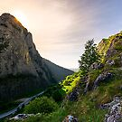 road in Canyon of Trascau mountains by mike-pellinni