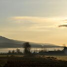 Morning at the Farm by MaluC