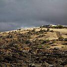 seascapes #218, orange lichen line by stickelsimages