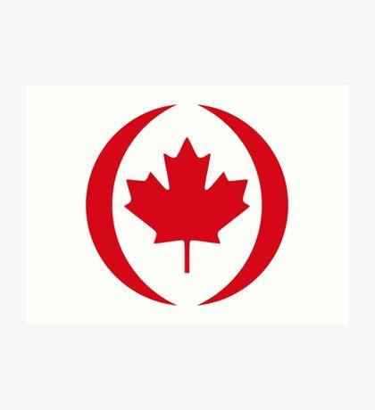 Canadian Patriot Flag Series 1.0 Art Print