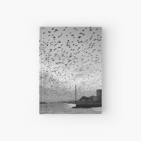 Starlings over West Pier Hardcover Journal