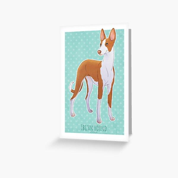 Ibizan Hound - Podenco Ibicenco  Greeting Card