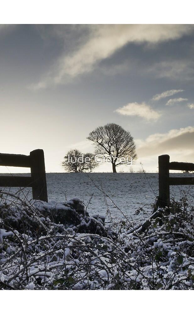 Snow Tree by Jude Gidney