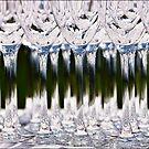 Drinks by Philip  Rogan