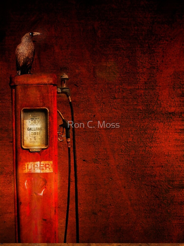e m p t y by ronmoss