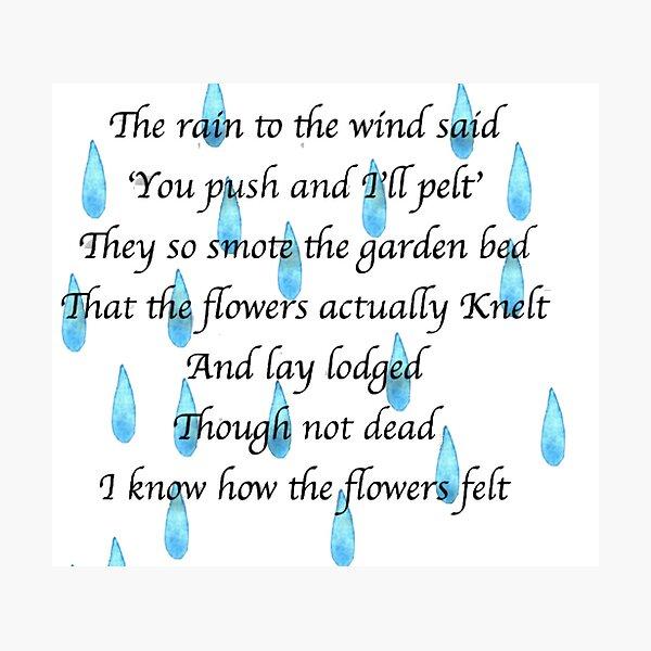 Lodged Robert Frost Poem Rain Photographic Print