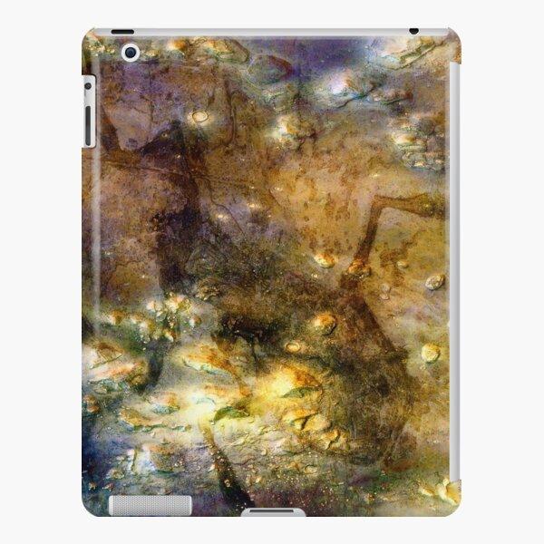 Martian Fossils 3 iPad Snap Case