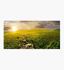 panorama of the hillside meadow at sunset Photographic Print