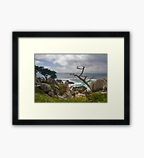 The Point of View Framed Print