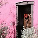 Hot Pink House by Kathleen Brant