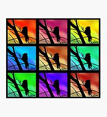 Andy Warhol Inspired Birds Photographic Print