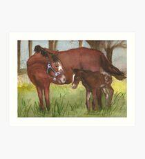 Mare & Foal Art Print