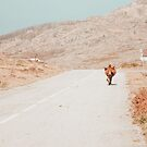 On the road by Ingrid Beddoes