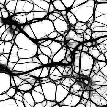 Neural Network by ColorfulCortex