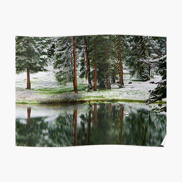 Reflections at Montecito Lake Poster