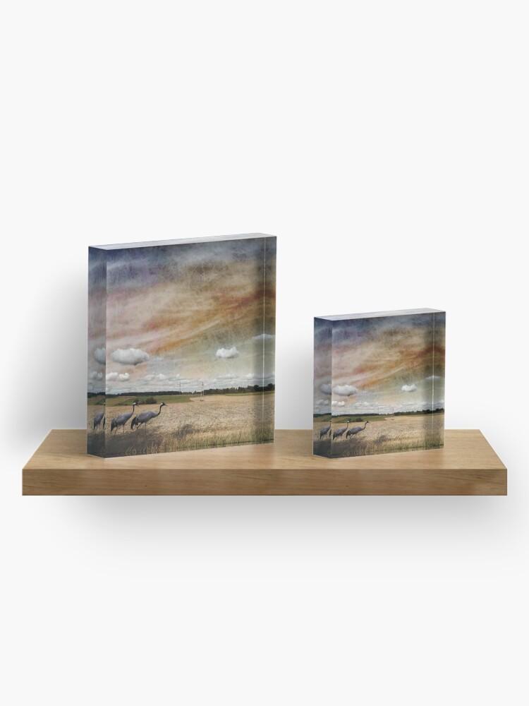 Alternate view of Two Cranes Acrylic Block