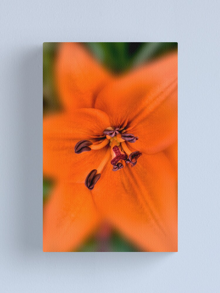 Alternate view of For Life Canvas Print