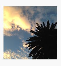 Palm Tree - The Sun Behind The Clouds Photographic Print