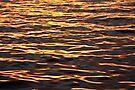 Metallic lake by Liz Percival