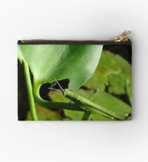 Handsome Meadow Katydid Studio Pouch