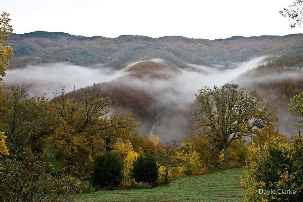 Autumn colours by David Clarke
