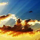 The Heavens  by cshphotos