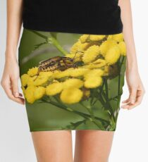 Pensylvania Leather-wings Mini Skirt