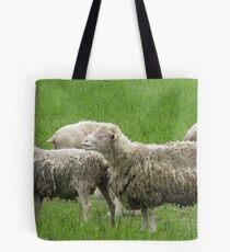 Sheep in Sheeps Clothing Tote Bag