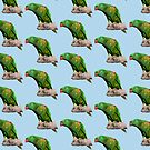 Lorikeet pattern 2 by quentinjlang