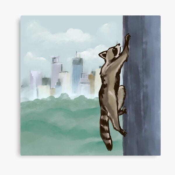 MPR Raccoon print by Megan Tegeder Canvas Print