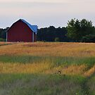 Barns and Rural Scenery by mltrue