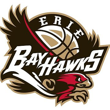 Erie Bay Hawks - Basketball Team by Connorlikepie