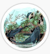 Plecostomus Bio-Bubble Sticker