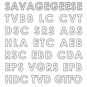 SNAA - Savagegeese Nonsense Automotive Acronyms by SavageGeese