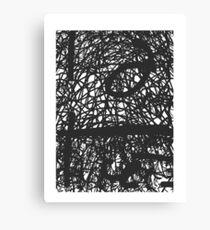 Improvised Lace Canvas Print