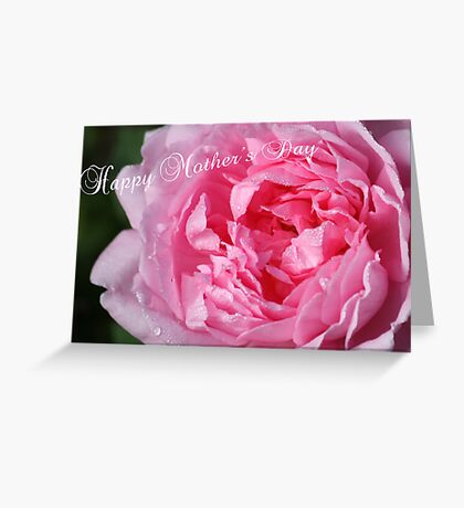 Rose Mothers Day - Greeting Card Greeting Card