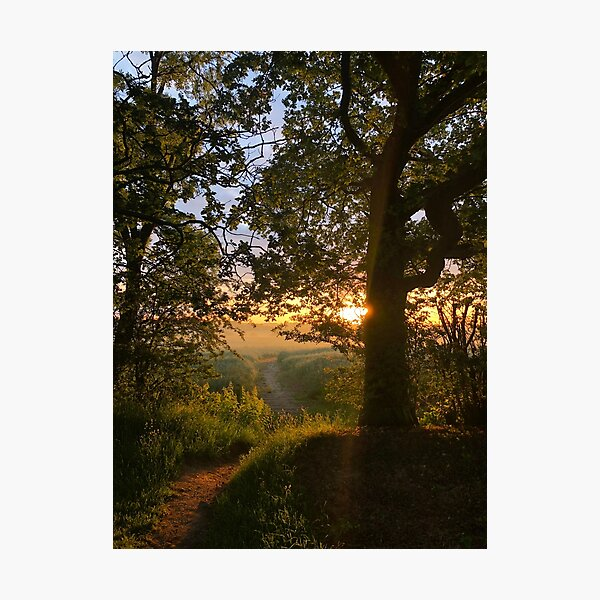 Path to the Sun  Photographic Print
