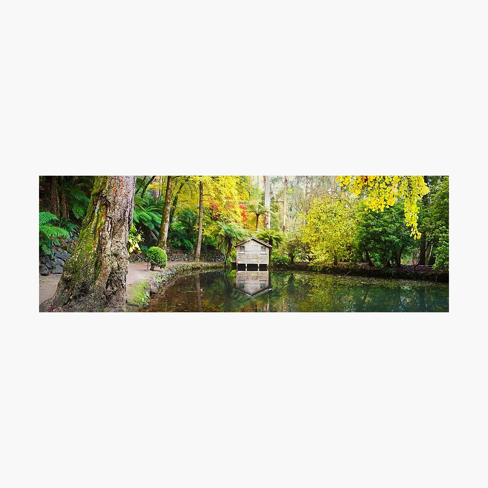 Boathouse in Autumn, Alfred Nicholas Gardens, Melbourne, Australia Photographic Print