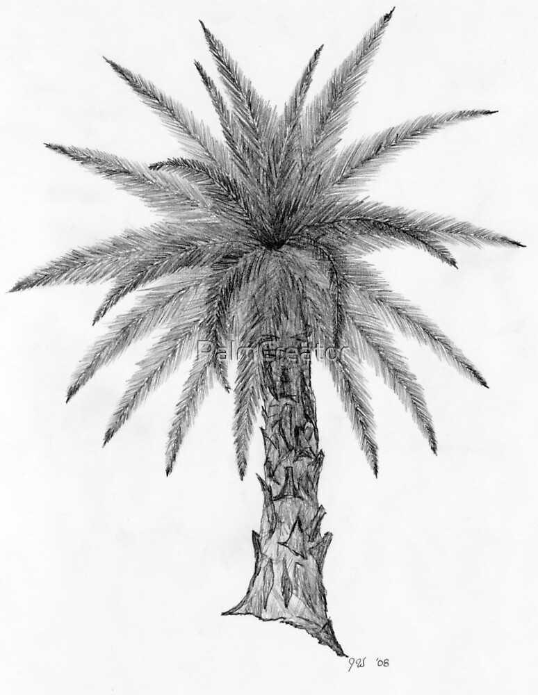 Quot Elegant Palm Tree Sketch Quot By Palmcreator Redbubble