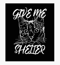 Cat Rescue Give Me Shelter Photographic Print