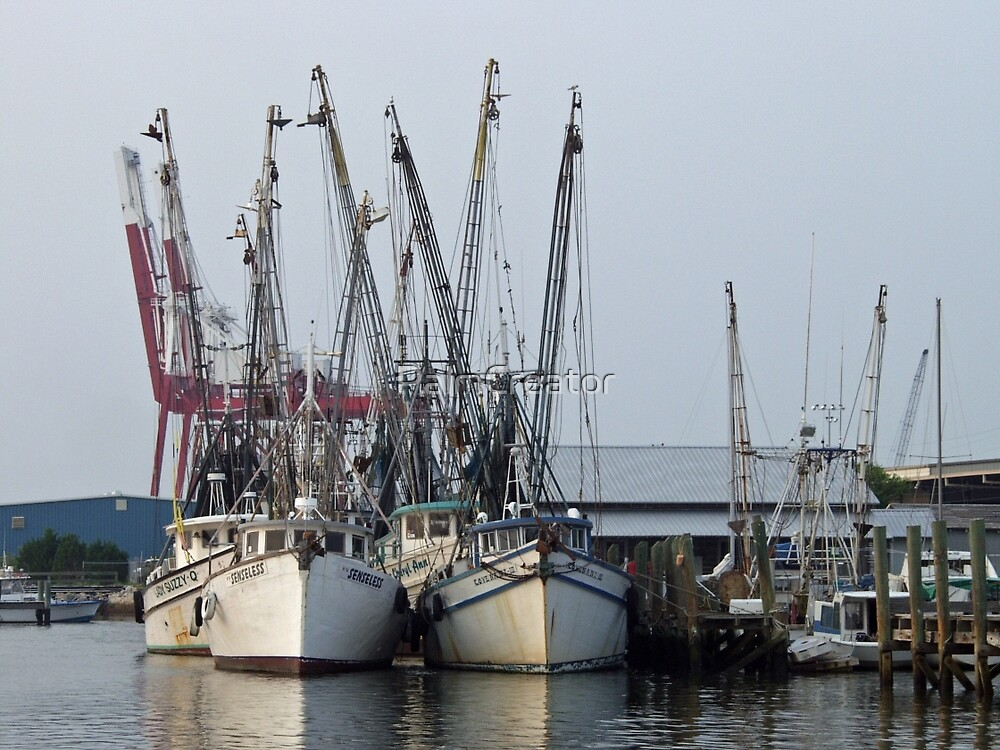 Fishing Fleet by PalmCreator
