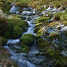Allt Horn Waterfall, Foinaven Scotland by Mishimoto
