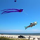 Large Kites Over The Beach by Cynthia48