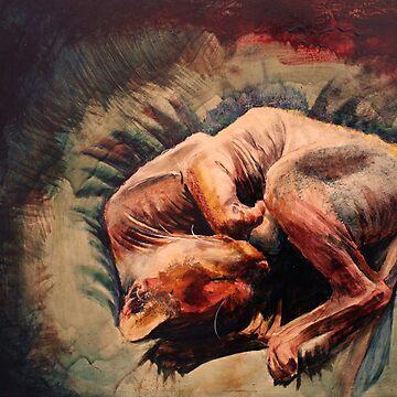 Sphynx cat by damasktattoo