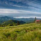 Along the Blue Ridge by Jane Best