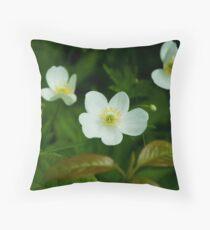 Canada Anenome (Anenome canadensis) Throw Pillow