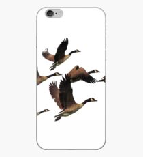 Flying Canadian Geese iPhone Case