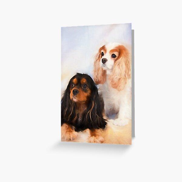 Two Beautiful Cavalier King Charles Spaniels Greeting Card