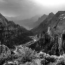 Straight Down Zion Canyon by Wayne King