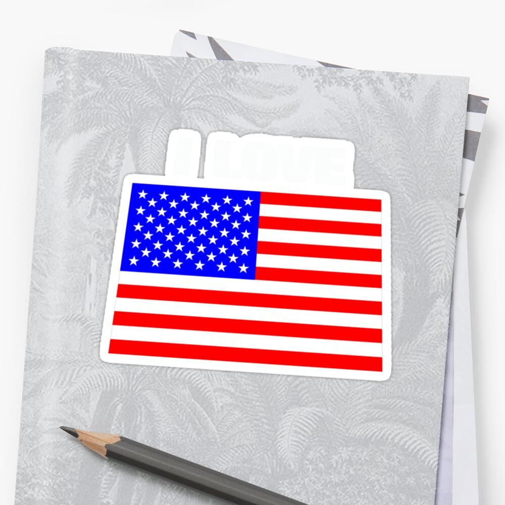 I love USA by AravindTeki